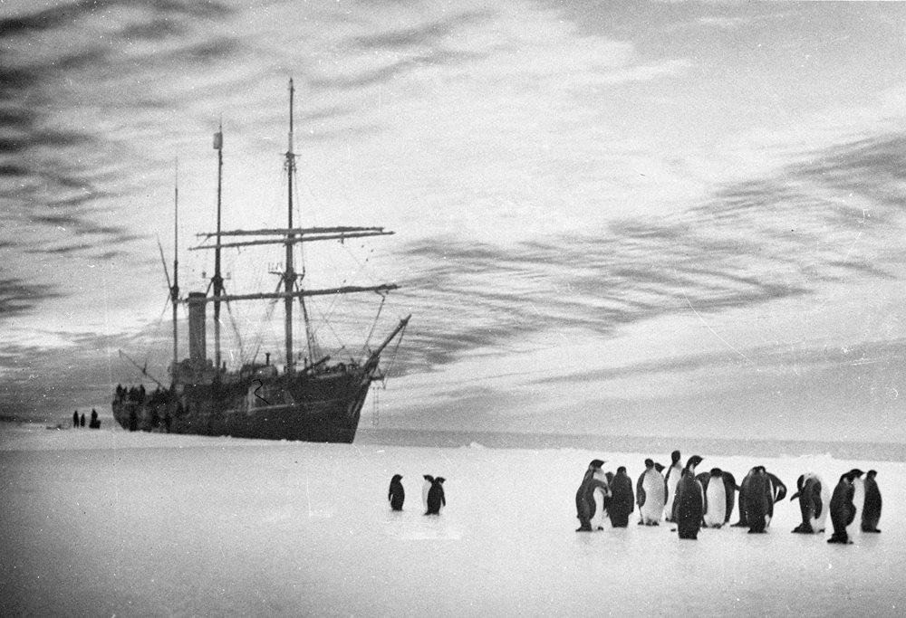 Dobývanie južného pólu objektívom tých, ktorí sa ho zúčastnili