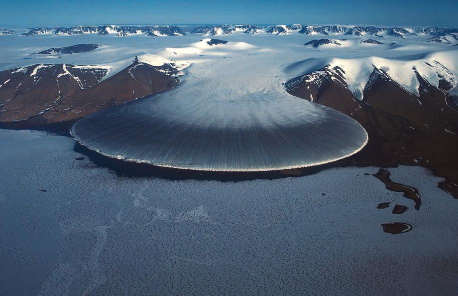 Ľadovec Slonia noha