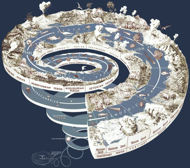 Dejiny Zeme vrolke toaletného papiera (aktivita)