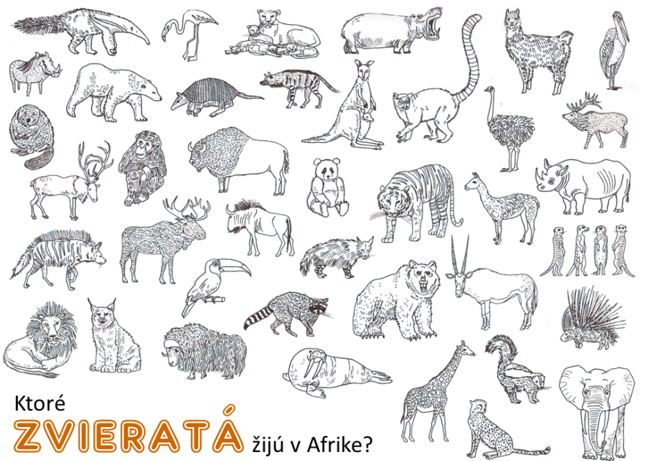 zvieratá Afriky omaľovanka