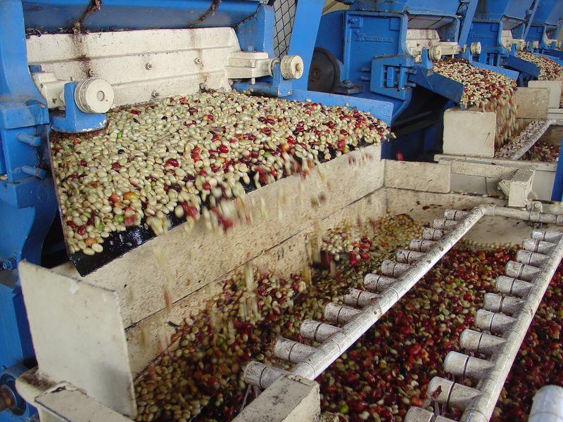 priemyselný mlyn na kávu