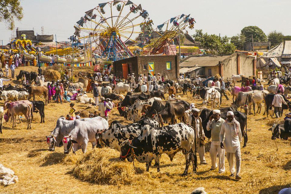 Dobytčí trh vIndii sa ponáša nanaše jarmoky