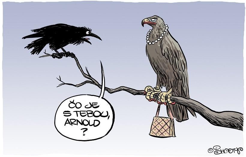 orlica arnold