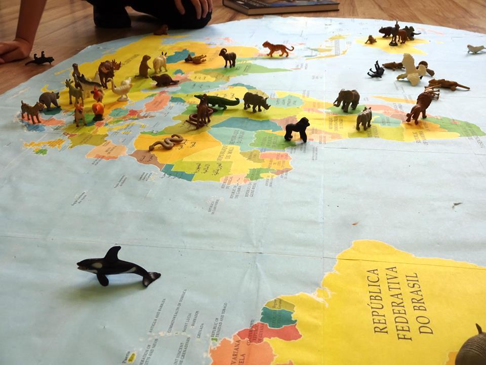 figúrky zvierat mapa geografia