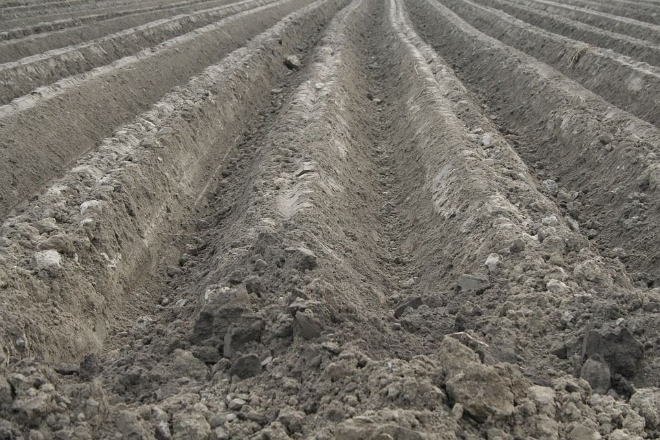 pôdy Slovenska