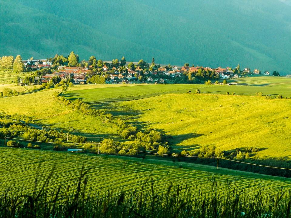 poľnohospodárstvo Slovenska