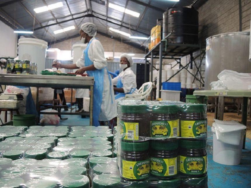podnikanie Afrika