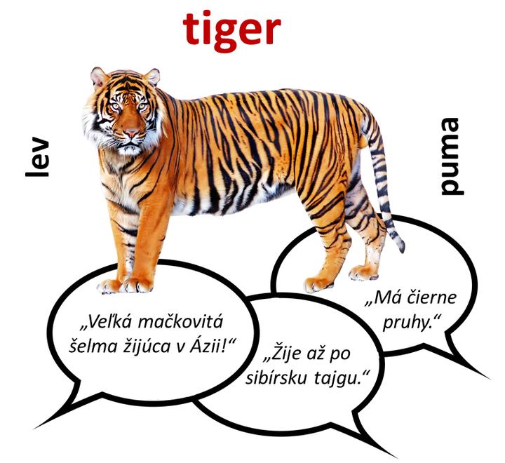 Tabu slovná hra škola